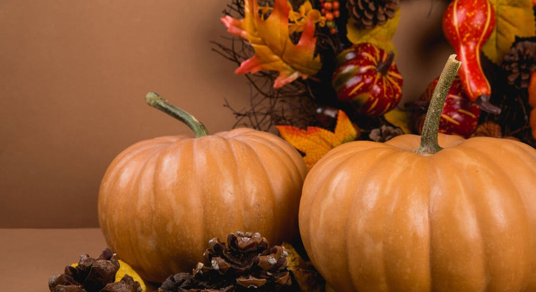7 Tips for a Kid with Autism to Enjoy Thanksgiving